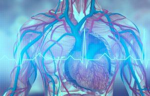 Boston Scientific Emblem Subcutaneous Electrode